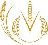 Elementos do trigo Imagem de Stock Royalty Free