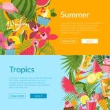 Elementos do verão, cocktail, flamingo, ilustração dos moldes da bandeira da Web das folhas de palmeira ilustração royalty free