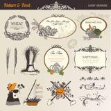Elementos do vetor da natureza & do alimento Imagem de Stock Royalty Free