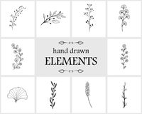Elementos e ícones florais tirados mão do logotipo Fotos de Stock Royalty Free