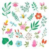 Elementos e insectos del diseño floral Foto de archivo