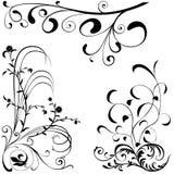 Elementos florais A ilustração do vetor