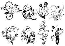 Elementos florais ilustração do vetor