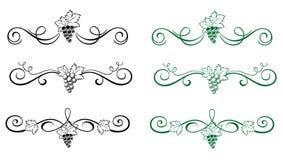 Elementos florais com uva ilustração do vetor