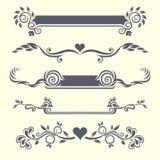 Elementos florais do projeto Imagem de Stock