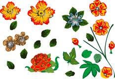 Elementos florais do projeto ilustração do vetor