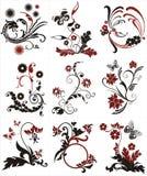 Elementos florais do projeto Fotos de Stock Royalty Free