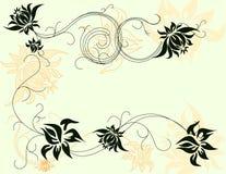 Elementos florais do vetor ilustração do vetor