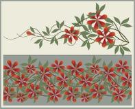 Elementos florais e beira. ilustração do vetor