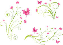 Elementos florais e borboletas ajustados Fotografia de Stock Royalty Free