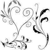 Elementos florais G ilustração royalty free