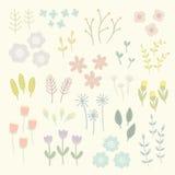 Elementos florais isolados Fotos de Stock