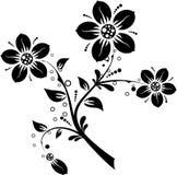 Elementos florais para o projeto,   ilustração do vetor