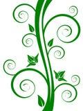 Elementos florais verdes Imagem de Stock Royalty Free