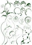 Elementos florales stock de ilustración