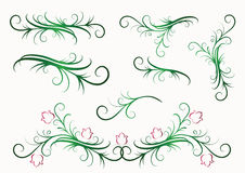 Elementos florales decorativos Imagenes de archivo