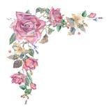 Elementos florales decorativos de la acuarela Imagen de archivo libre de regalías