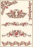 Elementos florales del diseño Foto de archivo