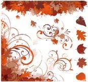 Elementos florales del otoño Imagen de archivo libre de regalías