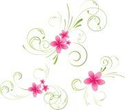 Elementos florales del Plumeria