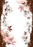 Elementos florales del vector Foto de archivo libre de regalías