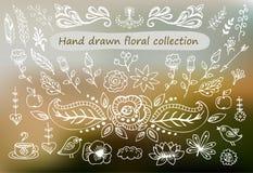 Elementos florales dibujados mano del vintage Sistema de flores, de flechas, de iconos y de elementos decorativos Imagen de archivo libre de regalías
