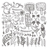 Elementos florales dibujados mano del vintage Sistema de las flores, flechas, icono stock de ilustración