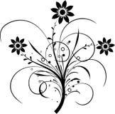 Elementos florales para el diseño,   ilustración del vector