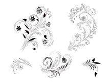 Elementos-florals do projeto Imagem de Stock Royalty Free