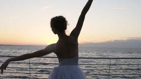 Elementos graciosos da dança da bailarina do balé clássico , levantando as mãos sensualmente Ideia da parte traseira de uma posiç video estoque