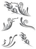 Elementos hermosos del ornamento floral Foto de archivo libre de regalías