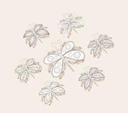 Elementos incompletos del diseño del garabato del cuaderno de la mariposa a mano ilustración del vector