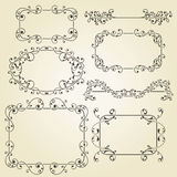 Elementos laçado do design floral Imagens de Stock