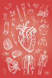 Elementos médicos Imágenes de archivo libres de regalías
