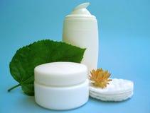 Elementos naturales del cuidado de piel Foto de archivo