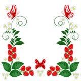 Elementos ornamentales del diseño - vector Imagen de archivo