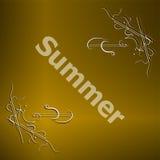 Elementos para los diseños caligráficos del verano Ornamentos del vintage Imagenes de archivo
