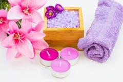 Elementos para termas e Aromatherpay Fotos de Stock Royalty Free