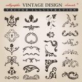 Elementos reales del diseño de la vendimia caligráfica de la flor Fotos de archivo