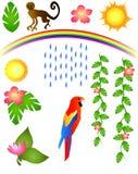 Elementos tropicales Foto de archivo libre de regalías
