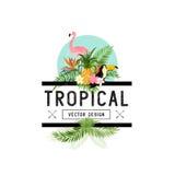 Elementos tropicales del diseño Imágenes de archivo libres de regalías