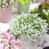 Elementos y detalles del jardín y decoración e interior caseros Pequeñas flores de las plantas artificiales del color blanco y ro imágenes de archivo libres de regalías