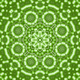 8 elements colored mythical kaleidoscope. Green flowers 8 elements colored mythical kaleidoscope Stock Images