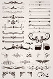 Elements Decorative Ornaments. Various calligraphic decoration elements for your design Stock Photo