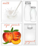Elements for design of packing milk dairy. Vector illustration. Elements for design of packing milk dairy. Milky splash. Ripe peaches Royalty Free Stock Image
