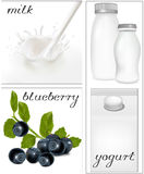 Elements for design of packing milk dairy. Milky s. Vector illustration. Elements for design of packing milk dairy. Milky splash. Blueberry Stock Photo