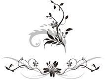 Elements of floral ornaments for design. Vector illustration Stock Images