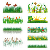 Elements of nature Royalty Free Stock Images