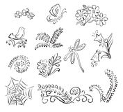 Elements of nature - vector Stock Images