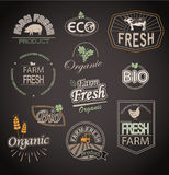 Elements for organic and farm fresh food. Set of badges and labels elements for organic and farm fresh food vector illustration